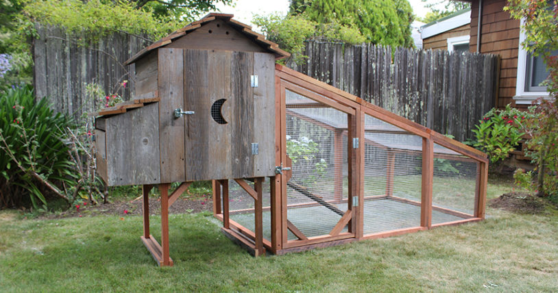 Cottage Coop with Run