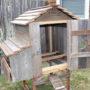 Cottage Hen House Open Door