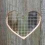 Heart – Door Motif
