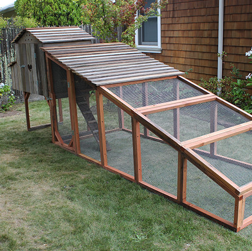 Bungalow Coop with Two Covered Roof Panels
