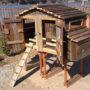 The Lodge Hen House Dual Doors