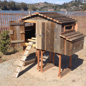 The Lodge Hen House